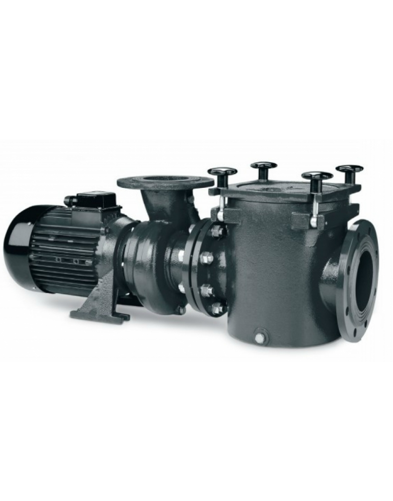 Насос с префильтром IML Danubi 5,5 кВт, 380В, 1500 об/мин, DNB0750-E-M